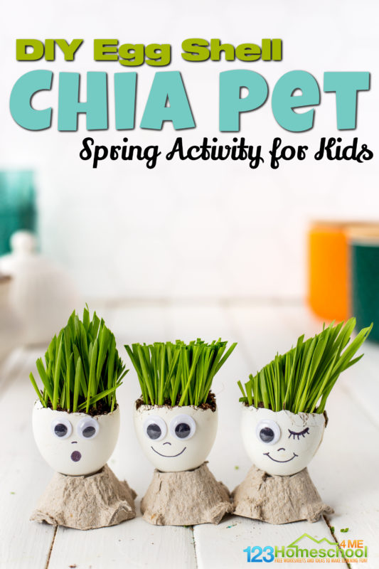 Egg Head Craft uses eggs to make a silly DIY Chia Pet. Try egg shell crafts is a cute spring activity for kids or summer activities for preschoolers.