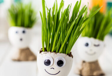 Spring Activity for Toddlers