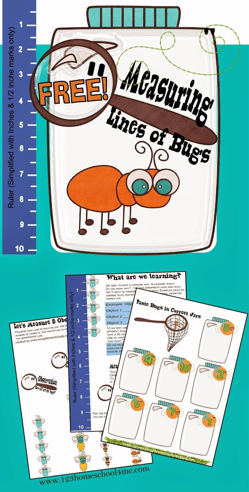 Measuring Bugs math worksheet for Preschool, Kindergarten, 1st grade. This free printable is so cute and lots of fun.