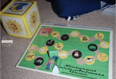 Nocturnal-Animal-Games-for-kids