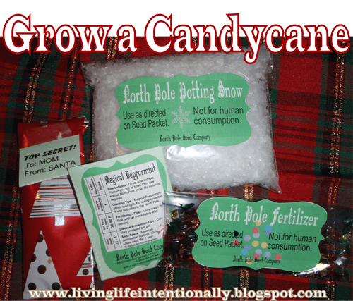 Grow a Candycane Kids ACtivity