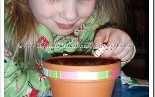 Grow a Candy Cane Activity