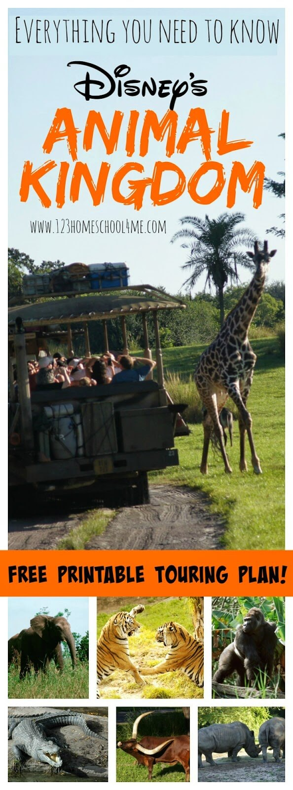 Animal Kingdom - Everything you need to know to plan an amazing disney vacation at Disney World's Animal Kingdom. Includes a free printable trouring plan with suggest order, favorite snacks, height requirements, tidbits, tips and more! #animalkingdom #disneyworld #familyvaction