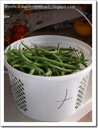 home grown green beans