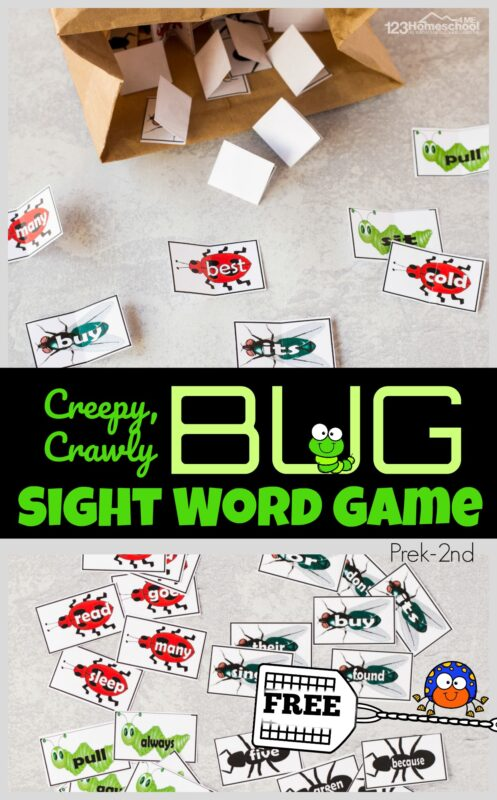Make practicing sights words FUN with this cute Bug Sight Words Game for preschool, pre k, kindergarten, 1st grade, and 2nd grade students to practice common dolche words.