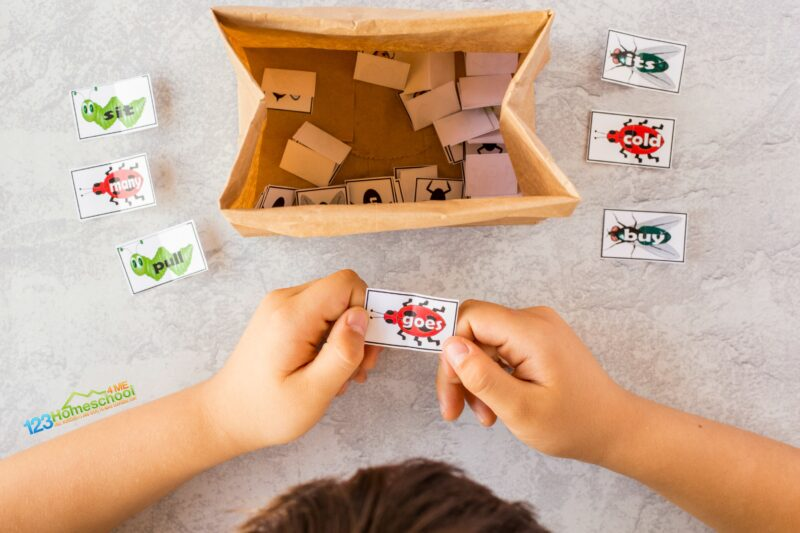 hands on Free Sight Word Games with a fun bug them for preschool, pre k, kindergarten, first grade students
