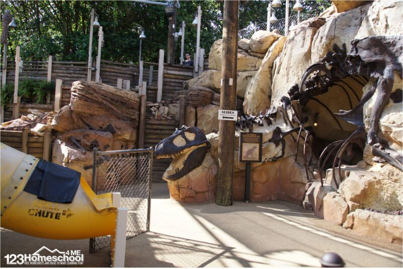 dinosaur-boneyard-fun-playground-at-animal-kingdom-disney-world-tips