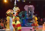 festival-of-the-lion-king-show-disney-world-animal-kingdom