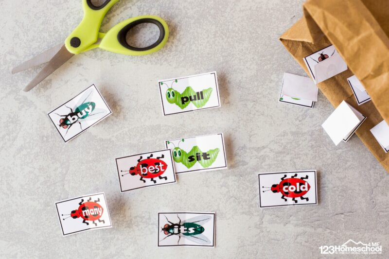 cut the bugs apart and place in a bag, hat, or bug collector and you are ready to play the insect sight word game