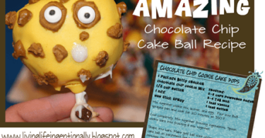 Amazing Chocolate Chip cake Ball Recipe