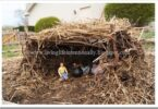 DIY Wattle and Daub House