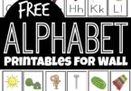 If you are working with your toddler, preschool, pre k, Kindergarten, and first grade student on learning the alphabet, you know they will need to reference something frequently to remember how to form their letters. It is a skill that just takes time and practice! These super cute, freealphabet printables for wall are a handy tool for helping children their their letters from A to Z. Print the pdf file with the free printable alphabet flash cards, cut apart, and hang on your wall for kids to reference the upper and lowercase letters frequently.