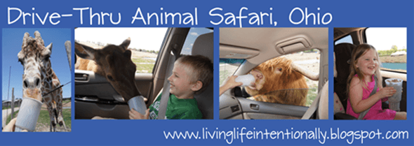 Drive THru Safari Park Family Trip