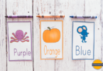 FREE Printable Color Flashcards