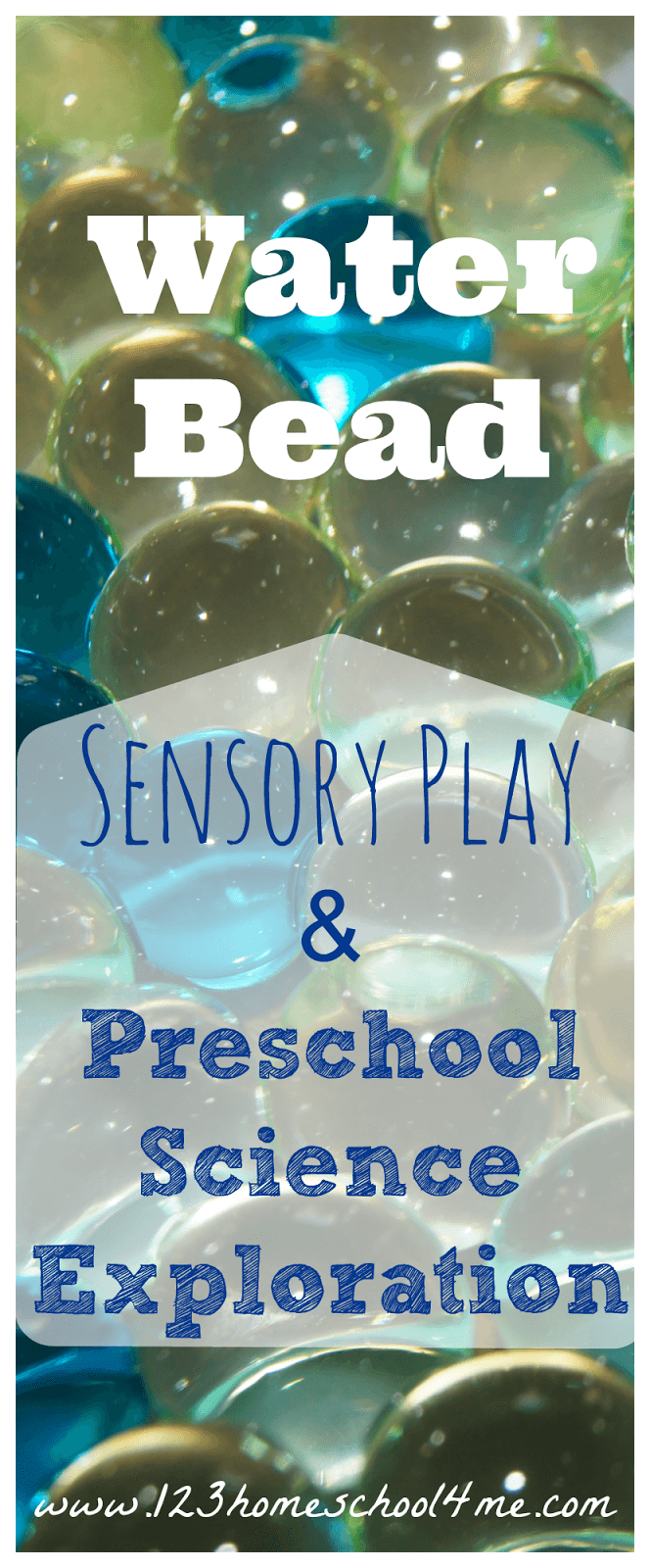 Water Bead Preschool Science - this is such a fun, hands on science experiment for prek, kindergarten, first grade, second grade