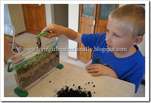 Worm Observatory - Science FUn for Preschoolers
