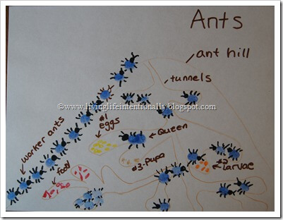 close up of ant hill illustration for kids