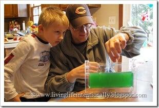 Indoor Ant Farm - Exploring habitats with kids