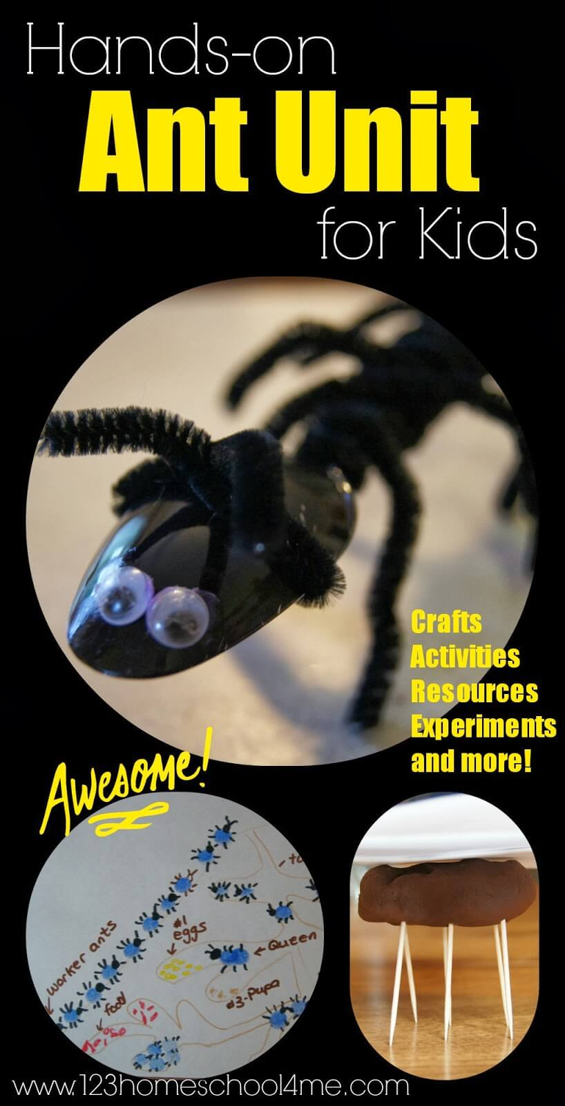 We are starting our hands on bug unit by learning about ants for kids. Make a cuteant craft that helps kids understand the importance of all the apendages or the colony inside that ant hill, plus lots of ant activities, insect printables, ant life cycle, and lots of other fun ideas! This ant lesson plant is perfect for toddler, preschool, pre-k, kindergarten, first grade, and 2nd graders too.