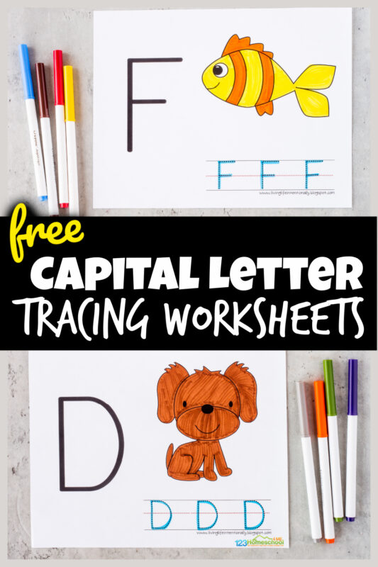 These simpleuppercase alphabet tracing pages are perfect for toddler, preschool, pre-k, and kindergarten age children who are learning their letters. These capital letter tracing worksheets allow students to trace their upper case letters, color cute clipart that features the letter to start learning the sounds letters make, learn letter beginning sounds, and strengthen hand muscles too. Simply printletter tracing worksheets pdf file with alphabet tracer pages freeand you are ready to play and learn your ABCs.