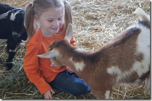 Fieltrip to farm to see a Goat