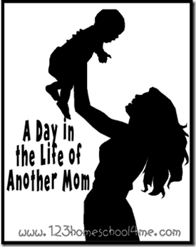 day in the Life of another mom series