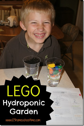 Lego Hydroponic Garden #lego #science