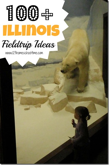 Illinois Fieldtrip Ideas - looking for a HUGE list of homeschooling fieldtrip opportunities in Illinois? I've got over 100 fantastic ideas for your next Illinois based fieldtrip.