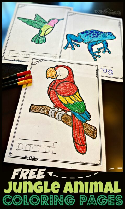 - FREE Jungle Animal Coloring Pages
