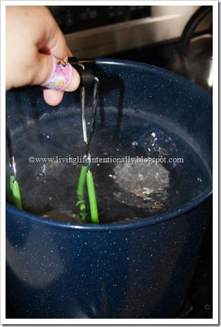 Preserving Homemade Jam