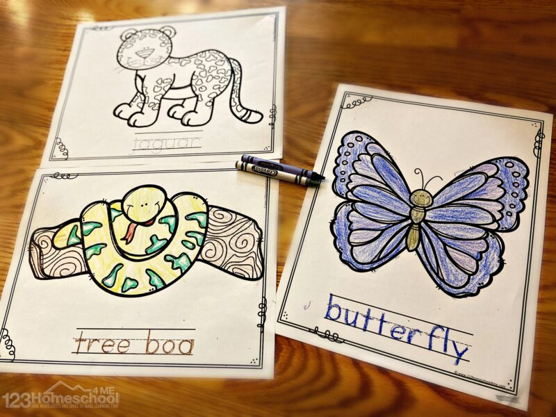 Free Jungle Animal Coloring Pages