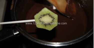 Chocolate Kiwi Treat