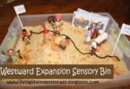 wild-west-sensory-bin