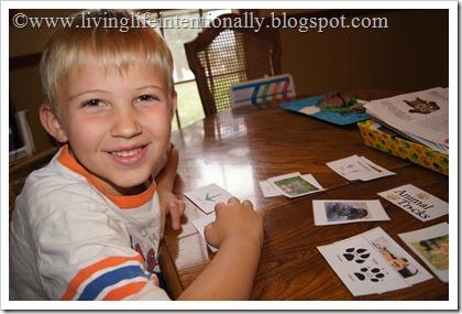 homeschool westward expansion unit- studying animal tracks