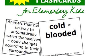 Biology-Vocabulary-Flashcards