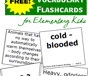 Biology-Vocabulary-Flashcards