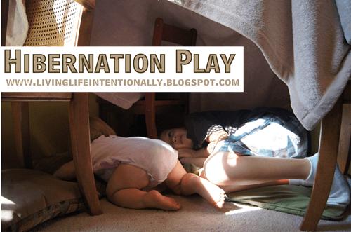 Help kids learn about the seasons and hibernation through play #science #preschool #homeschooling