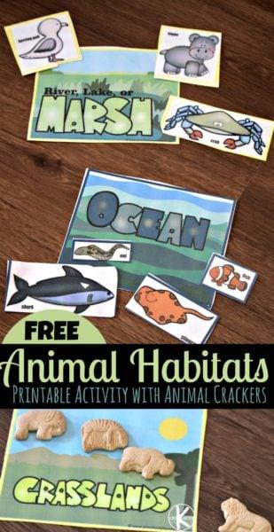 animal cookie animal habitats sorting activity