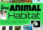 animal habitats for kids