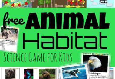 animal habitats for kids