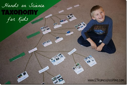 Taxonomy Hands on Science for Homeschool Kids