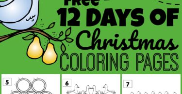 Help kids practice counting to 12 while celebrating the holidays in December with these super cute, free printable, 12 days of Christmas Coloring Pages! Simply download pdf file and print. There is a coloring page for each number 1-12 to go along with this popular Christmas song. This is such a fun way for toddler, preschool, pre k, kindergarten, first grade, and 2nd grade students to practice how to count to 12, strengthen fine motor skills, and learn a classic carol at the same time.