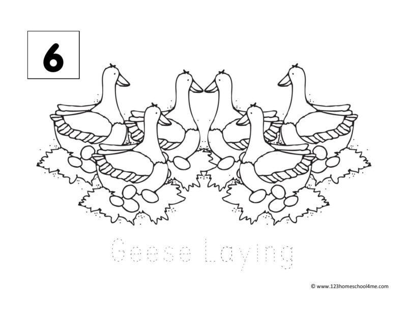 Twelve days of Christmas Colouring pictures