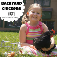 Backyard Chickens 101 Series - Step by step directions on how to raise your own backyard chickens