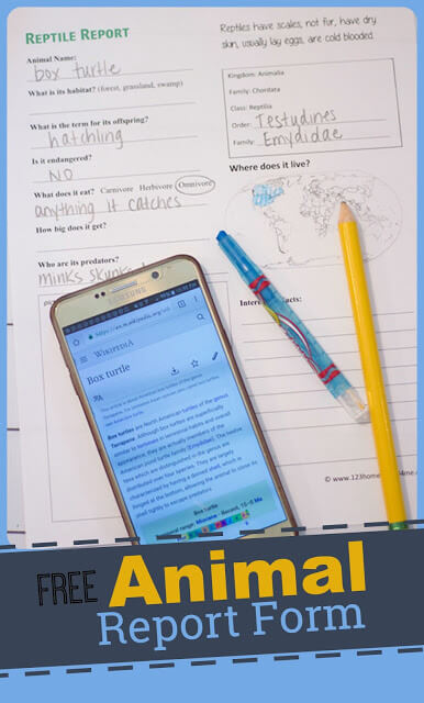 This Animal Report Template is perfect for helping kindergartners, first graders, 2nd graders, 3rd graders, 4th graders, 5th graders, and 6th grade students learn about zoo animals. As kids reserach and fill out the my animal report they will learn about animal habitats, status in the wild, what it eats, where it lives, who its predators are, intersting facts, and more! This is a great supplement to a biology or zoology curriculum. Do one report, or complete one for each animal classifications. Simply download pdf file with free animal report template and you are ready to play and learn!