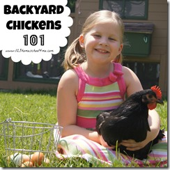 backyard chickens - everything you need to know to raise chickens