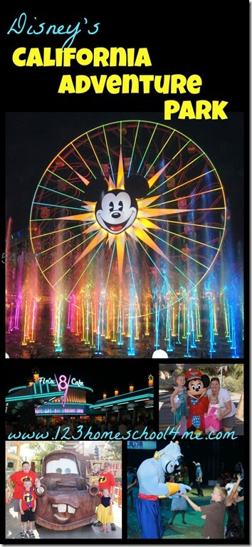 Disneyland California Adventure Park Review #disneyland #disney