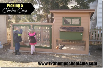 Backyard Chickens 101: Picking a Chicken Coop