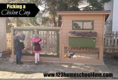 Picking a Chicken Coop
