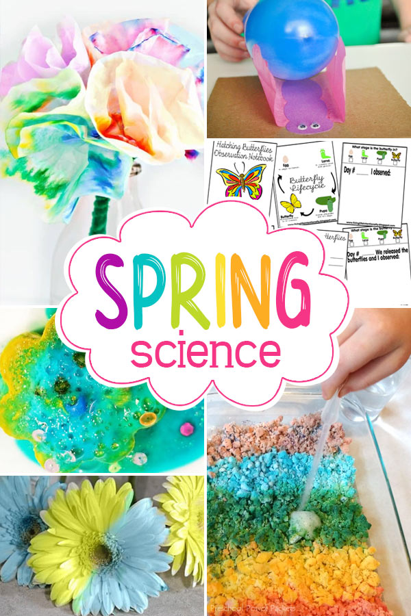 lots of fun spring science experiments, projects, and activities to keep kids exploring the world around them